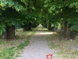 angelopiovanelli-cammino-solitario