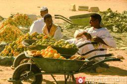 giuliabertoletti-mercato
