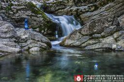 Fogazzi Francesco-Dalla sorgente in bottiglia