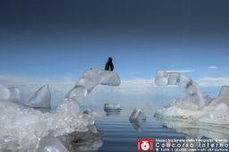 claudio-festa--global-warming