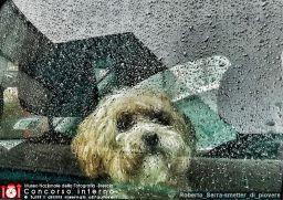 Roberto_Serra-smetter_di_piovere