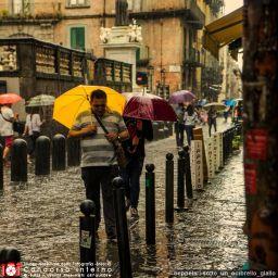 beppelari-sotto_un_ombrello_giallo