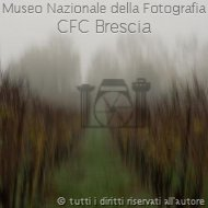 Rossella_giacolemmi-03